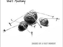 Void's Anatomy