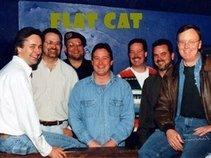 Flat Cat CR