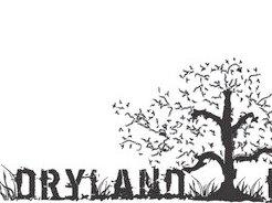 Dryland Farmers Band