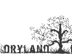 Image for Dryland Farmers Band