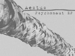 Image for Aestus