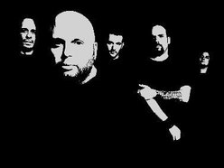 Image for Urbansnake
