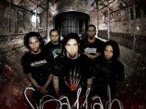 SpallaH