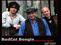 A.J. and the BADCATS