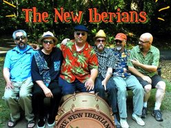 Image for The New Iberians Zydeco Blues Band