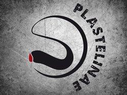 Plastelinae