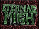 Image for Eternal Mosh