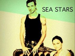 Image for SEA STARS