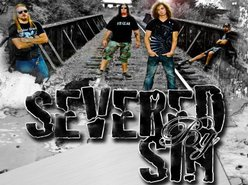 Image for Severed By Sin