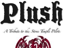 Plush Tribute Band