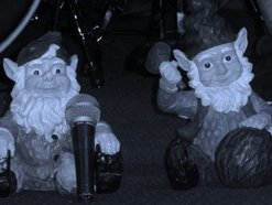 Image for The Wild Gnomes