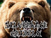 SilverbackGrizzly
