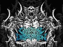 CEREBRAL DESECRATION