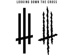 Image for Looking Down the Cross