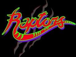 Image for Raptors