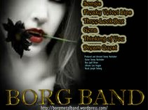 Beyond Our Recognition of God - BORG Band