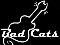 Image for The Bad Cats are Out of Hand!