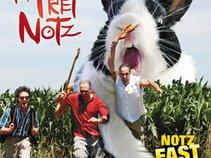 The Fret Notz