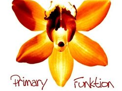 Image for Primary Funktion