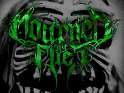 Image for Mourned By Flies
