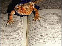 Wizard Lizard