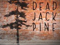 Dead Jack Pine