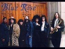 BLUE ROSE Detroit Boogie