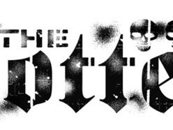 Image for The Rotten