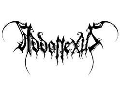 Image for Addonexus