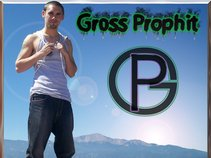 Gross Prophit