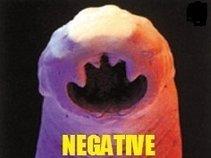 negative inbred parasites