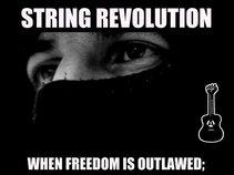 The Six String Revolution