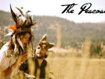 The Peacoats