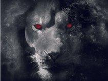 Beard The Lion