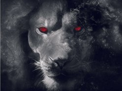 Image for Beard The Lion