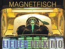 Magnetfisch