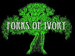 Image for Forks Of Ivory