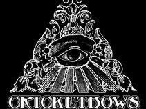 Cricketbows