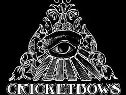 Image for Cricketbows
