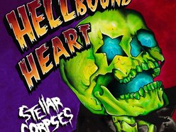 Image for Stellar Corpses