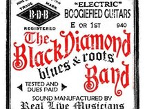 Black Diamond Roots Band