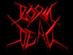 Image for Born Dead