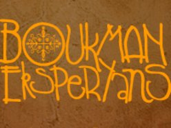 Image for Boukman Eksperyans