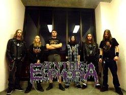 Image for Enter Euphoria