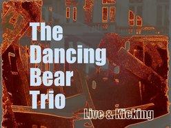 The Dancing Bear Trio