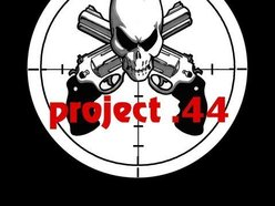 Image for project .44 (official)