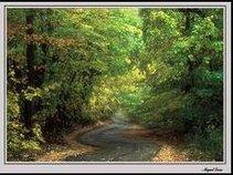 The Twisting Road