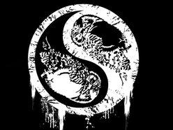 Image for Black Owl Rock