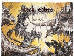 Image for Black Cobra