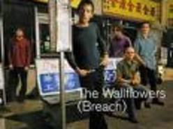 Image for The Wallflowers